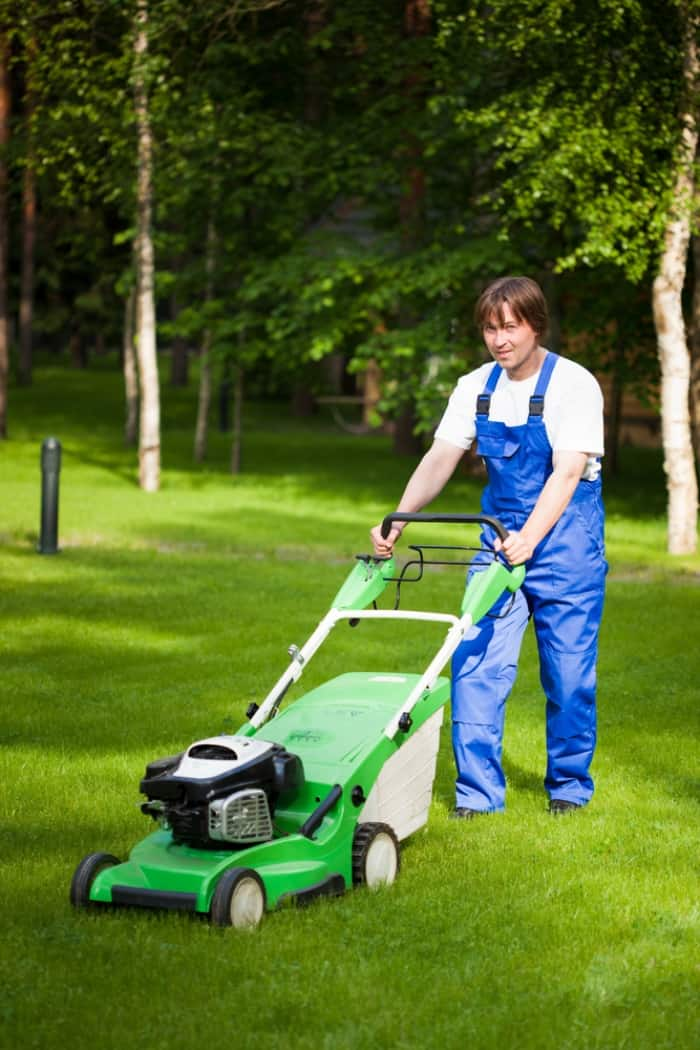 lawn mowing yard services
