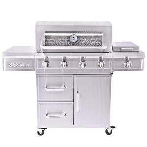 3 Embers 4-Burner Dual Fuel Propane Gas Grill