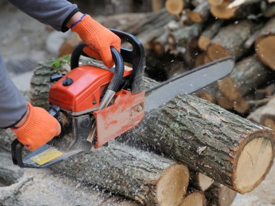 best electric battery chainsaws on sale 2019
